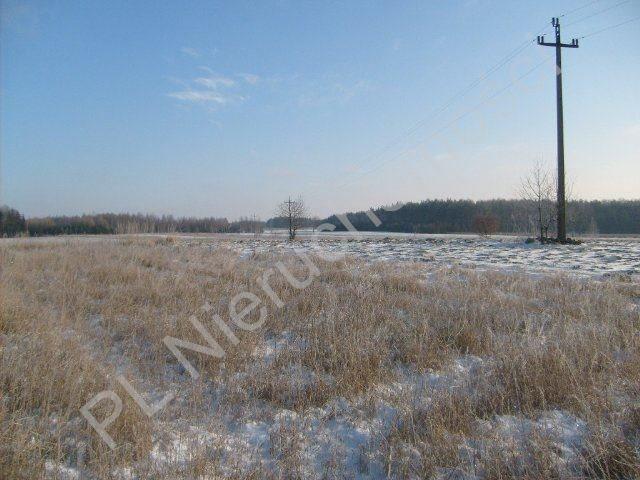 Działka rolna na sprzedaż Mszczonów  9700m2 Foto 2