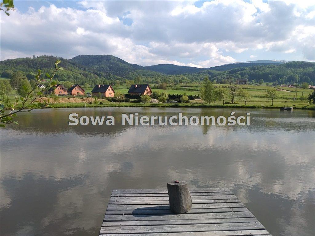 Działka inna na sprzedaż Sosnówka  6000m2 Foto 10