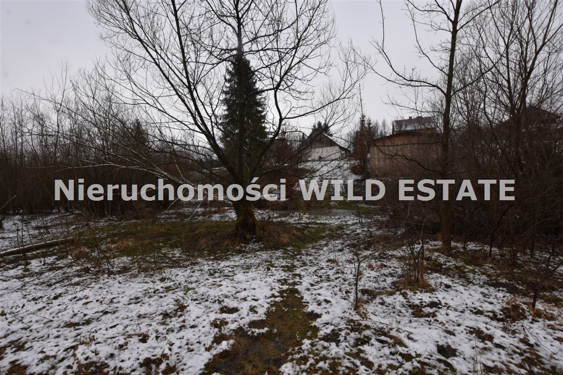 Działka rolna na sprzedaż Olszanica, Paszowa  5376m2 Foto 9
