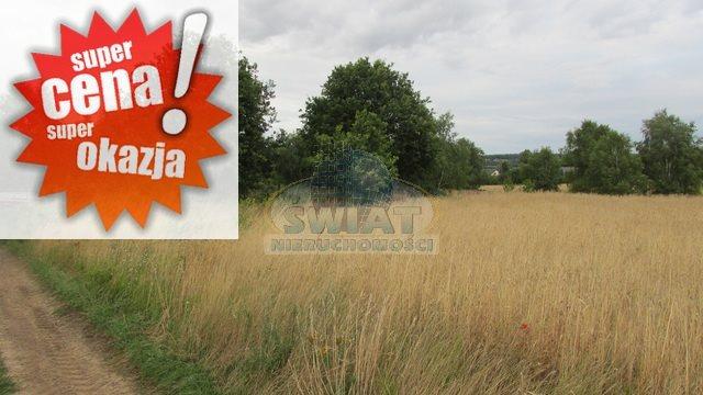 Działka rolna na sprzedaż Dolice  4800m2 Foto 1