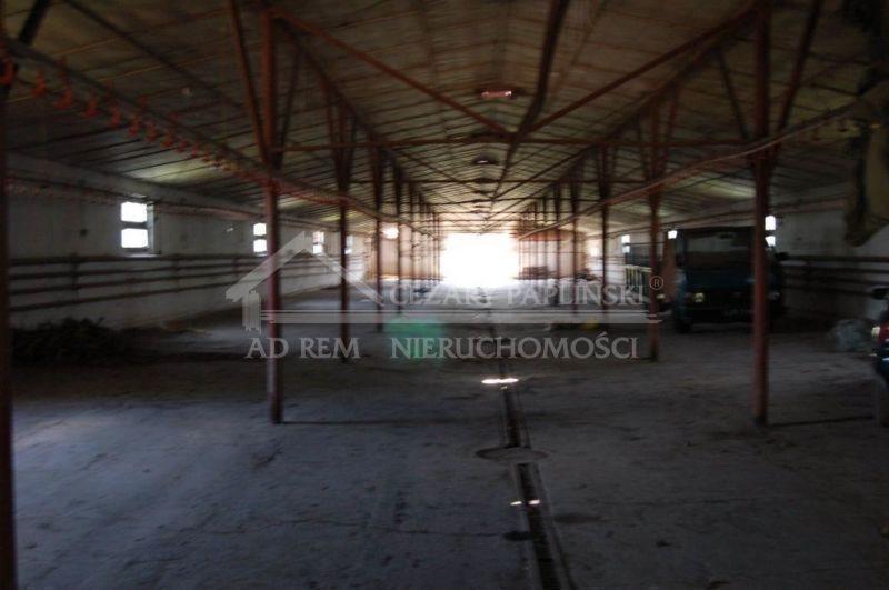 Lokal użytkowy na wynajem Nowogród, Nowogród  830m2 Foto 1