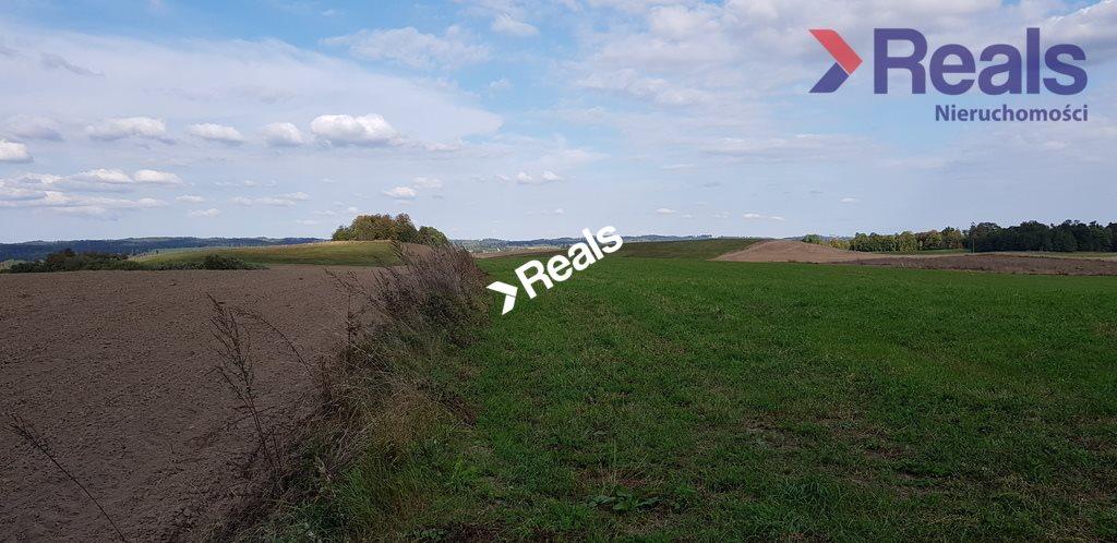 Działka rolna na sprzedaż Dąbrówka Polska  451200m2 Foto 2