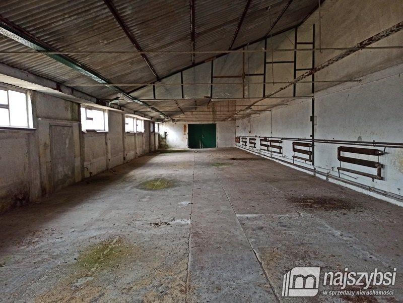 Działka inna na sprzedaż Ostrowice, wieś  73790m2 Foto 3