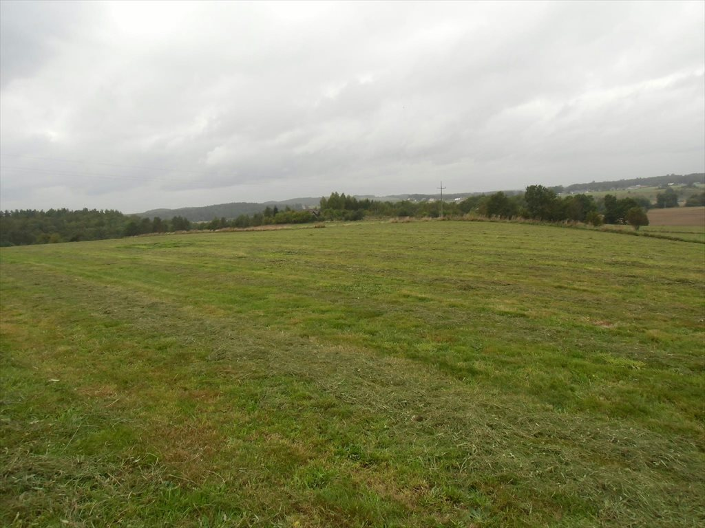 Działka rolna na sprzedaż Ustarbowo, Lipowa  9398m2 Foto 1