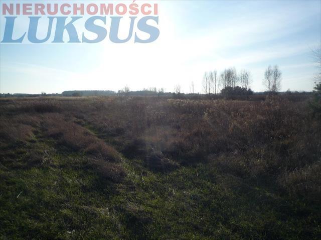 Działka rolna na sprzedaż Nowe Racibory, Nowe Racibory  3000m2 Foto 1