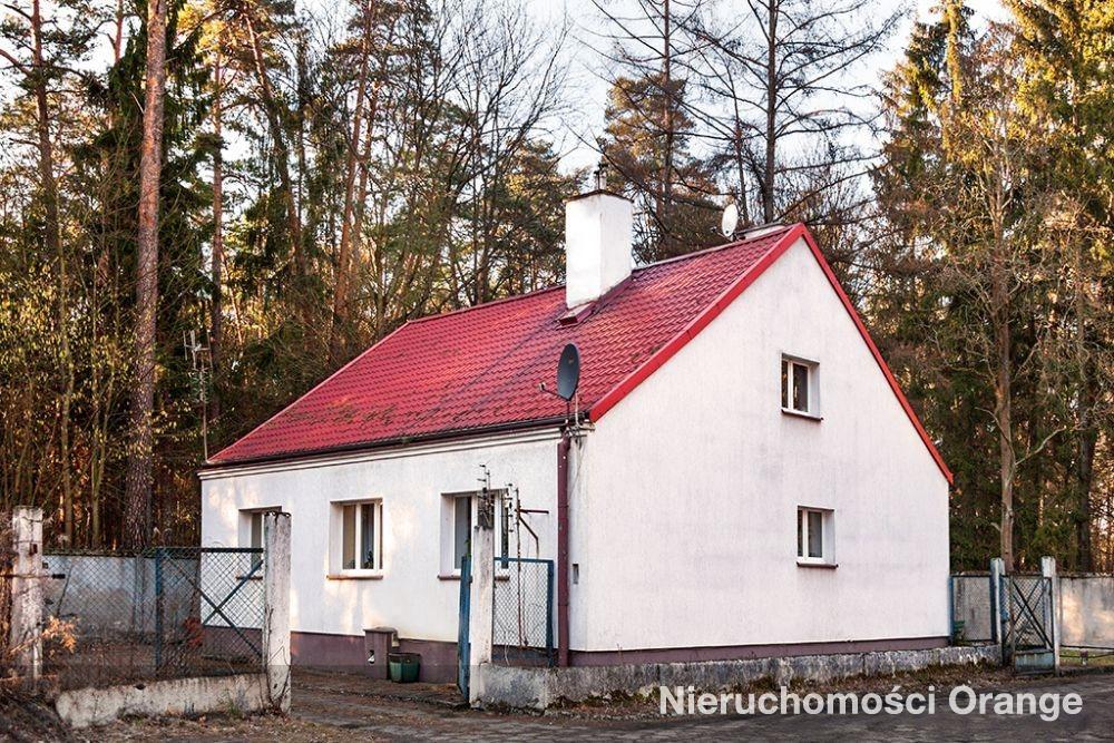 Lokal użytkowy na sprzedaż Olsztyn  1282m2 Foto 1