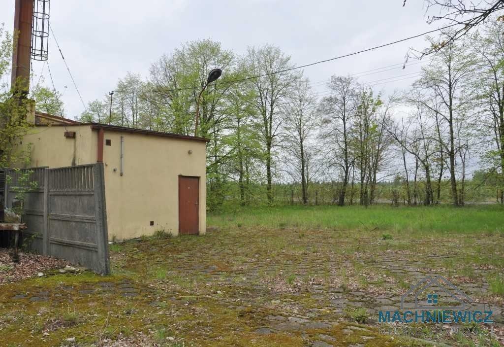 Lokal użytkowy na sprzedaż Bratoszewice  5612m2 Foto 4
