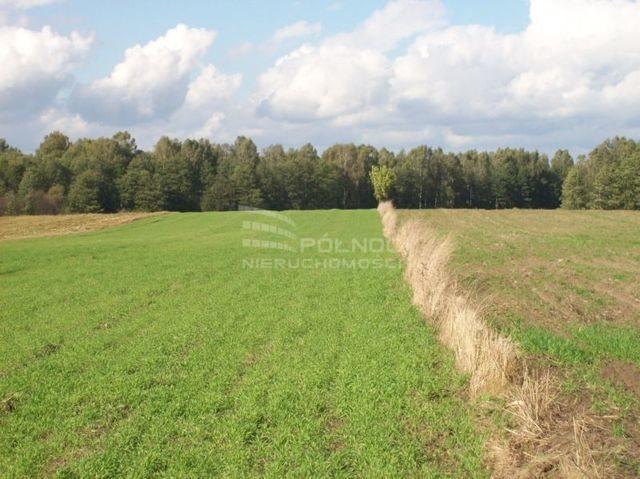 Działka rolna na sprzedaż Janowicze  3001m2 Foto 4