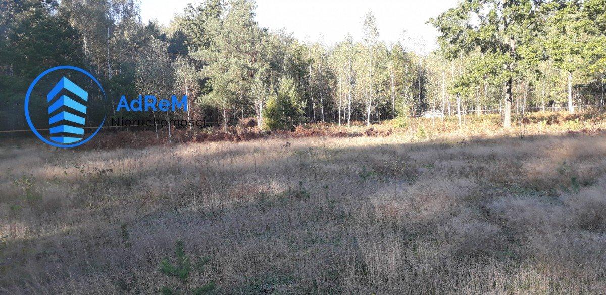 Działka rolna na sprzedaż Pańki  21000m2 Foto 1