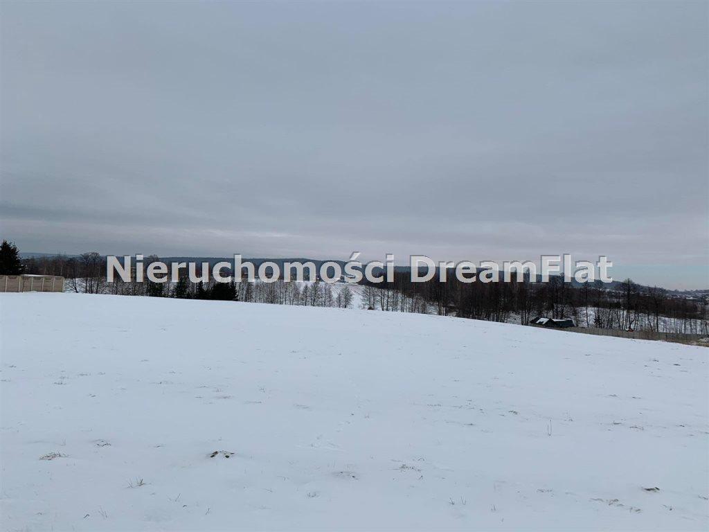 Działka budowlana na sprzedaż Lechów  9000m2 Foto 1