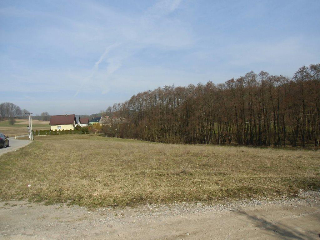 Działka budowlana na sprzedaż Kosowo  1000m2 Foto 2
