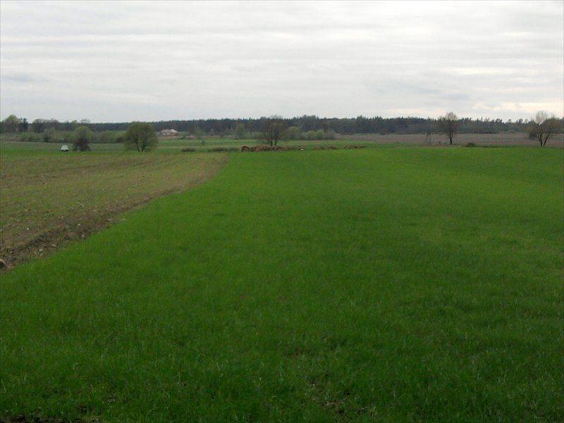Działka rolna na sprzedaż Rościsławice, Rościsławice  10200m2 Foto 1