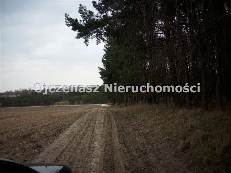Działka inwestycyjna na sprzedaż Lubiewo  100000m2 Foto 5