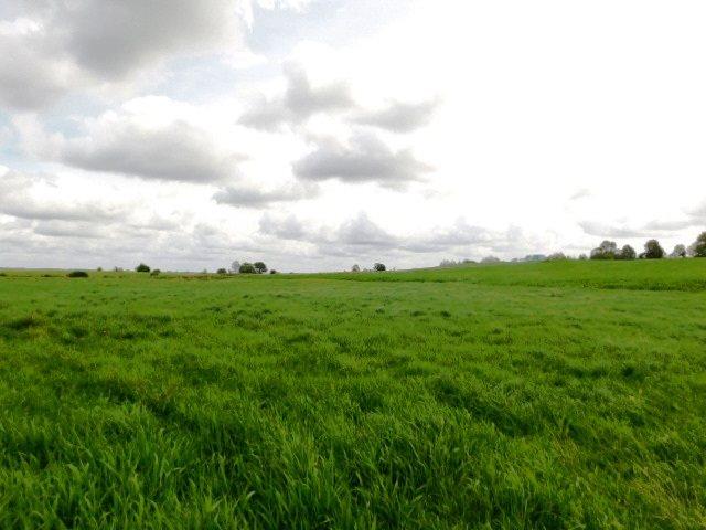 Działka rolna na sprzedaż Szczepanki  92900m2 Foto 5