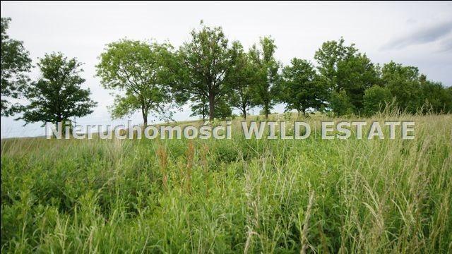 Działka rolna na sprzedaż Lesko  5784m2 Foto 5