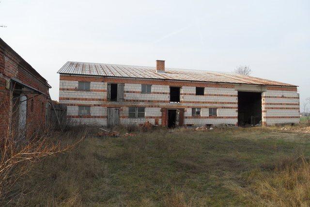 Działka budowlana na sprzedaż Olsza  12000m2 Foto 4