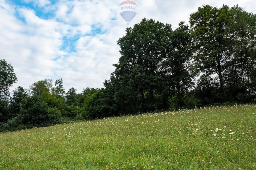Działka siedliskowa na sprzedaż Słupia  8000m2 Foto 3