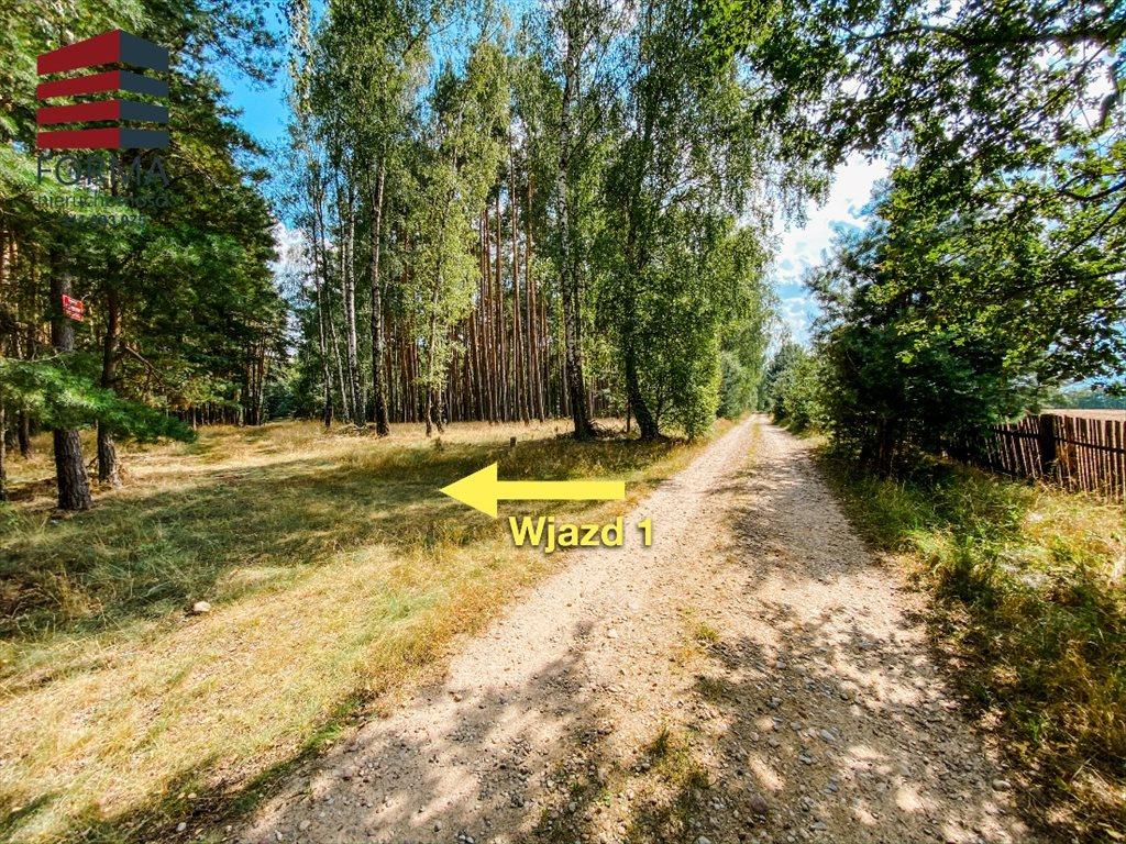 Działka budowlana na sprzedaż Zajączkowo, Zajączkowo  70600m2 Foto 8