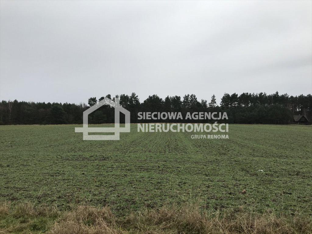 Działka rolna na sprzedaż Sasino  12100m2 Foto 1