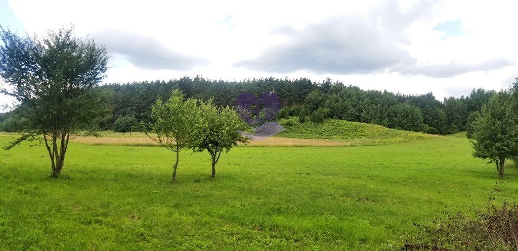 Działka inna na sprzedaż Studzianki, Wasilkowska  3536m2 Foto 6