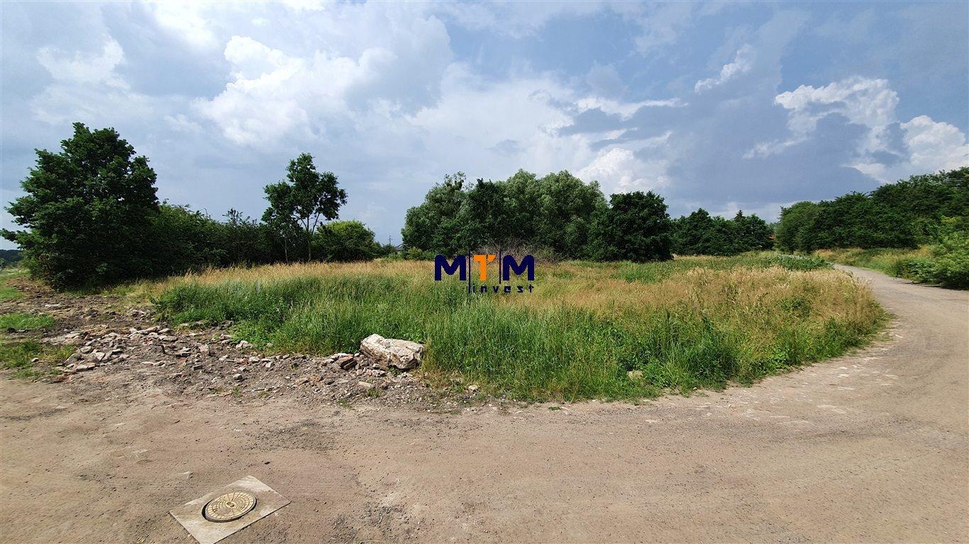 Działka budowlana na sprzedaż Dołuje  4704m2 Foto 6