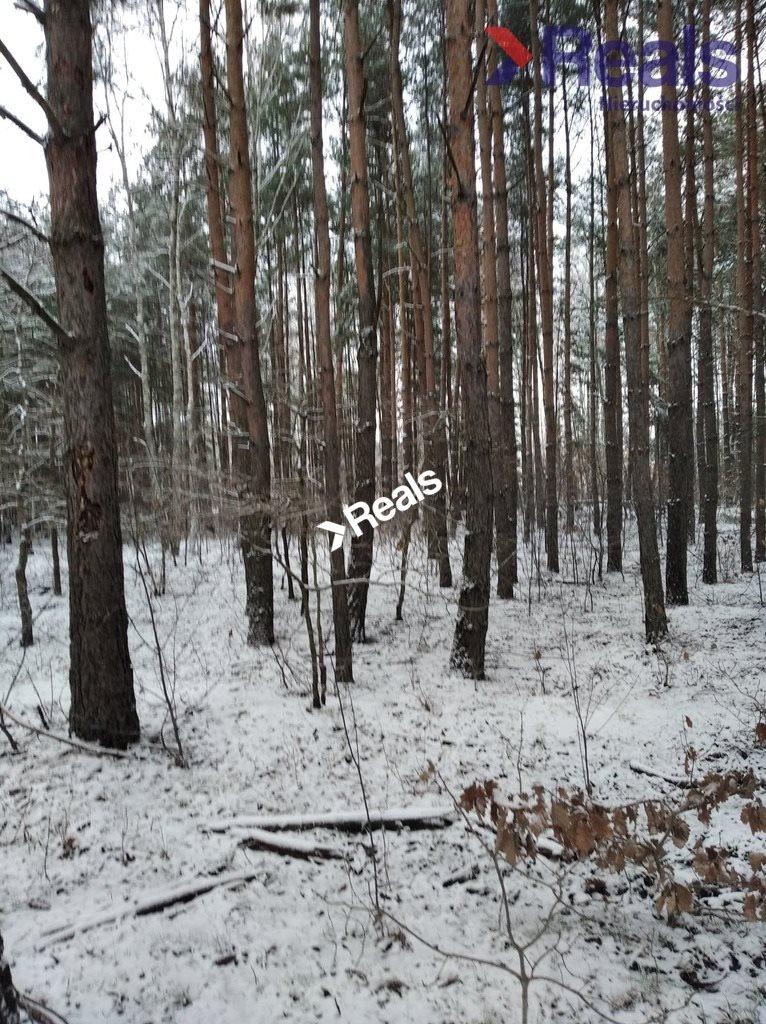 Działka leśna z prawem budowy na sprzedaż Warszawa, Wawer, Anin  3734m2 Foto 2