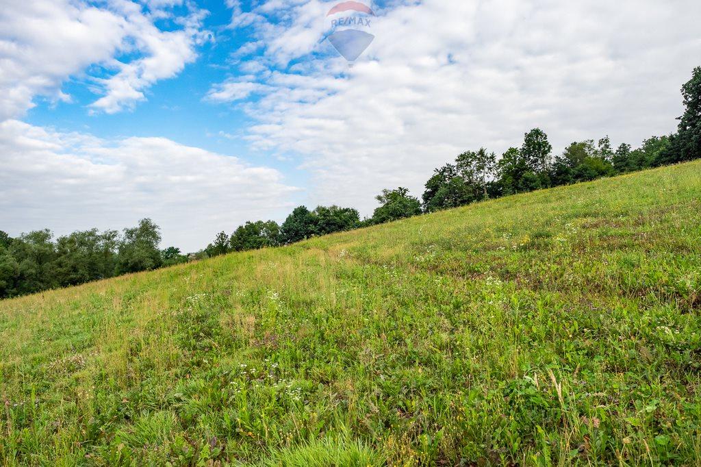Działka siedliskowa na sprzedaż Słupia  8000m2 Foto 5