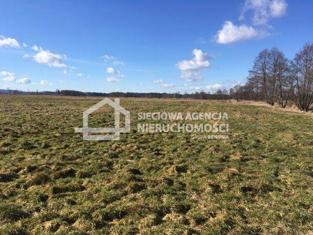 Działka rolna na sprzedaż Leśnice  40000m2 Foto 4