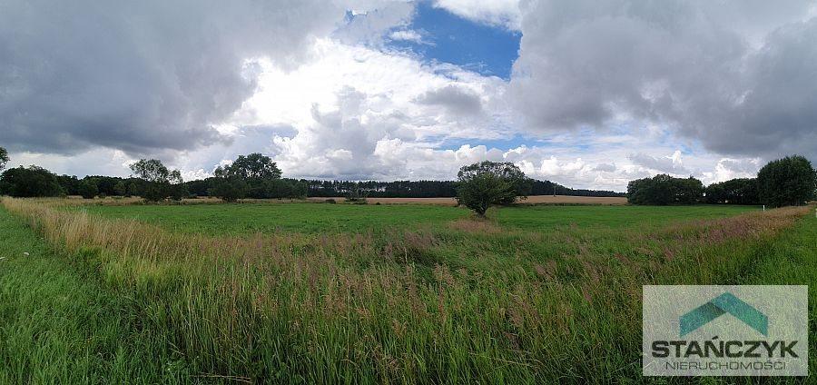 Działka budowlana na sprzedaż Parłówko, lasy, łąki  1000m2 Foto 1