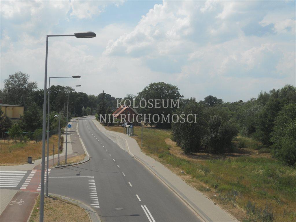 Działka siedliskowa na sprzedaż Toruń  6814m2 Foto 9