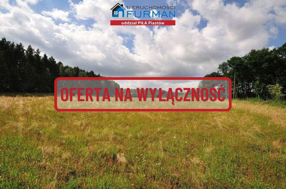 Działka rolna na sprzedaż Zabrodzie  7600m2 Foto 4