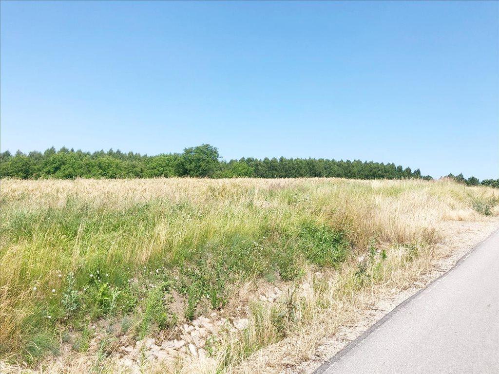 Działka rolna na sprzedaż Racławówka, Boguchwała  2200m2 Foto 3