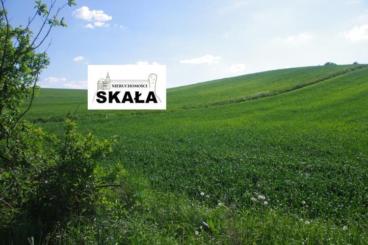 Działka rolna na sprzedaż Barbarka  5700m2 Foto 3