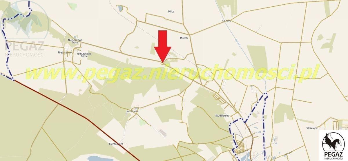 Działka rolna na sprzedaż Milcz, Holna / Zajęcza  6175m2 Foto 5