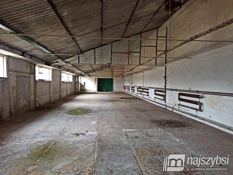 Działka inna na sprzedaż Ostrowice, wieś  73790m2 Foto 4