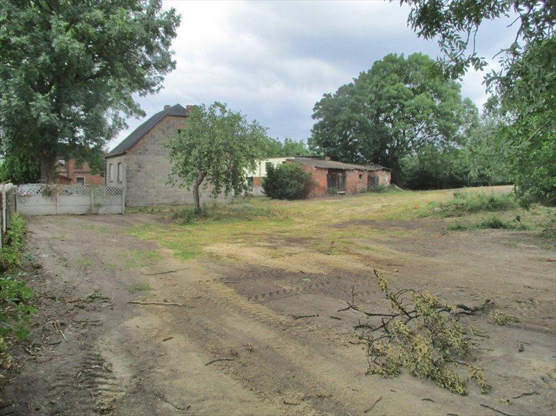 Działka budowlana na sprzedaż Poznań, Strzeszyn, Psarskie, Koszalińska  5000m2 Foto 1