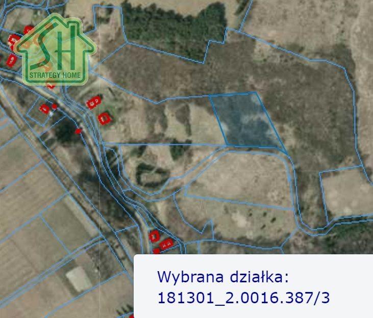 Działka budowlana na sprzedaż Leszczawka  41000m2 Foto 4