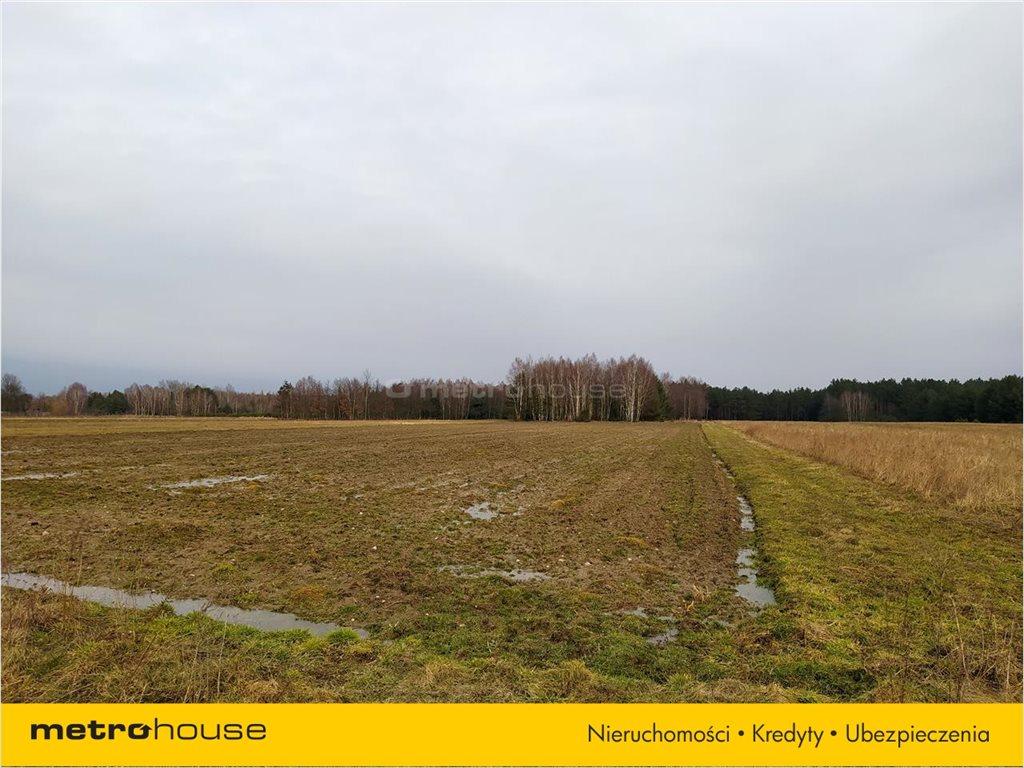Działka rolna na sprzedaż Chrząstawa, Widawa  23994m2 Foto 2