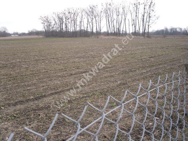 Działka inwestycyjna na sprzedaż Natolin  92900m2 Foto 6