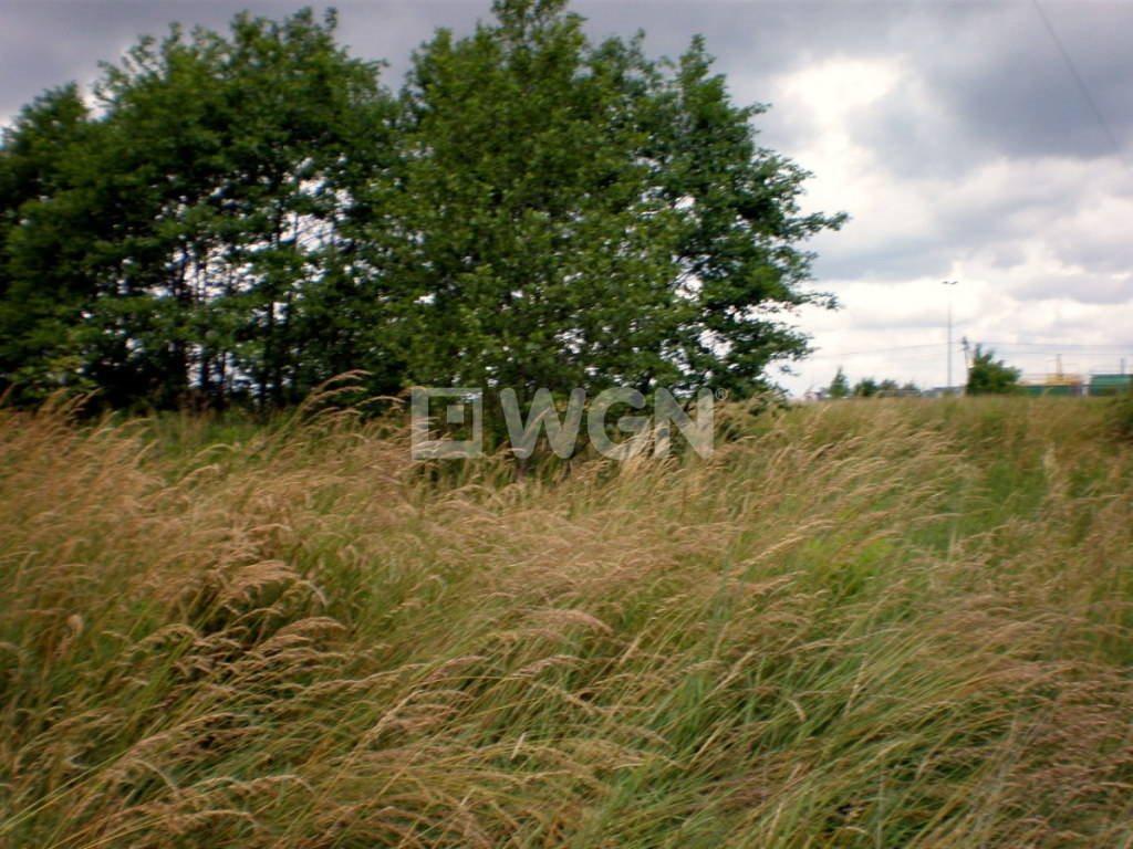 Działka rolna na sprzedaż Malawa, Malawa, Malawa  7500m2 Foto 6