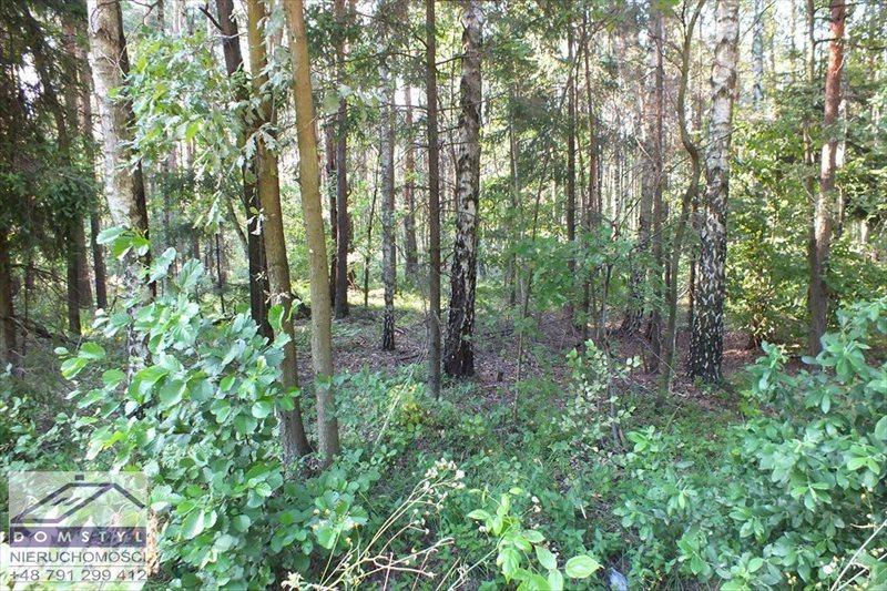 Działka leśna na sprzedaż Zawiercie, Blanowice, zawierciański  64912m2 Foto 4