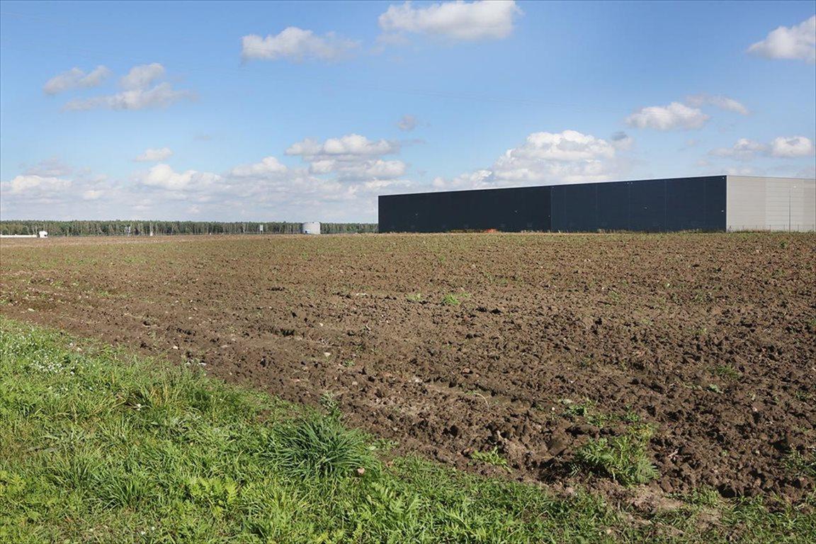 Działka budowlana na sprzedaż Zakroczym, Zakroczym  5268m2 Foto 13