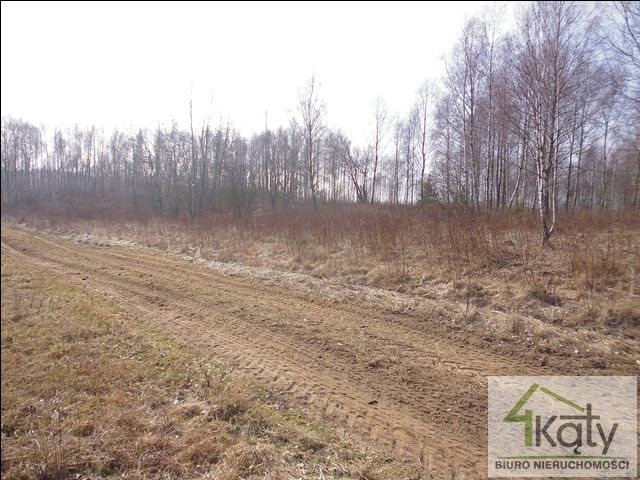 Działka rolna na sprzedaż Czarny Kierz, Czarny Kierz, Czarny Kierz  16500m2 Foto 5
