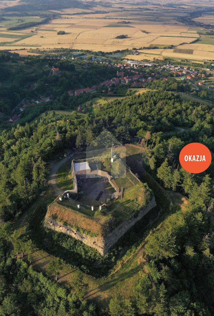 Działka budowlana na sprzedaż Srebrna Góra  5850m2 Foto 4