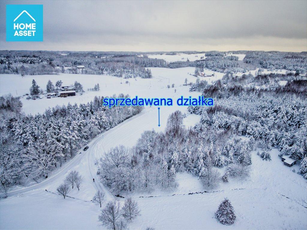 Działka rolna na sprzedaż Błotnia  9300m2 Foto 6