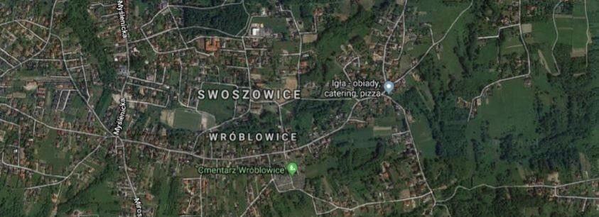 Działka budowlana na sprzedaż Kraków, Swoszowice  2700m2 Foto 3