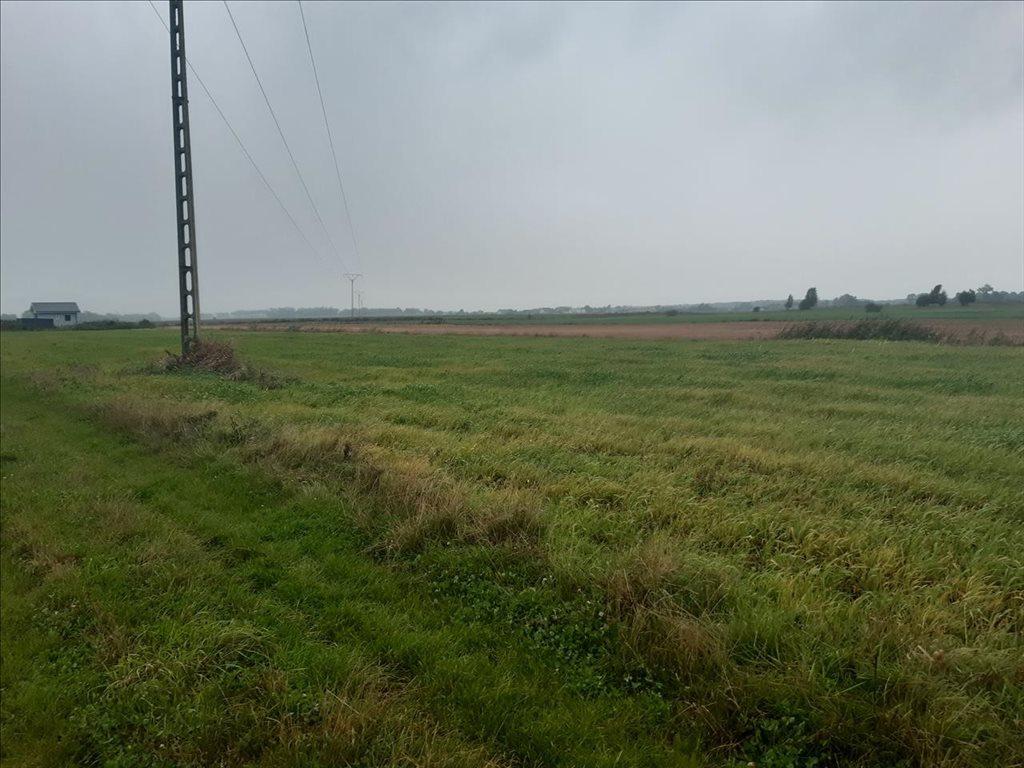 Działka rolna na sprzedaż Mielenko, Mielno  3020m2 Foto 5