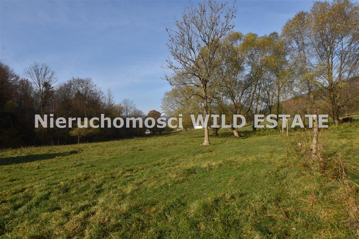 Działka rolna na sprzedaż Olszanica, Paszowa  3287m2 Foto 6