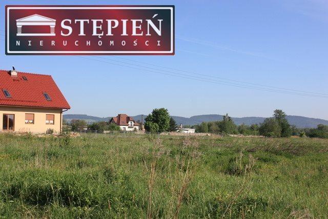 Działka budowlana na sprzedaż Jelenia Góra, Sobieszów  3100m2 Foto 12