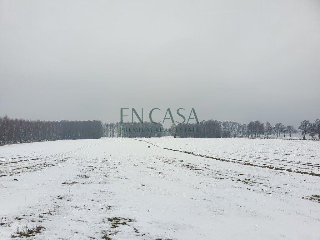 Działka budowlana na sprzedaż Harsz, Nowy Harsz  51000m2 Foto 3